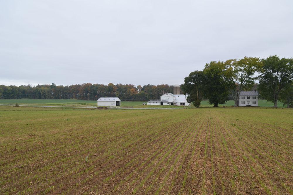 Mellinger farm 1